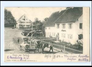 S2095/ Bad Tölz Leonhardi-Fahrt Wiehambauer v. Gaisach AK 1902