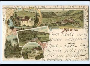 U9179-8640/ Gruß aus Mitwitz Litho AK 1898