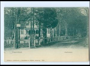 Y12814/ Friedrichsruh Oberförsterei ca.1900 AK