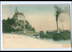 Y12664/ Schloß Hirschstein a. Elbe mit Elbdampfer AK 1901