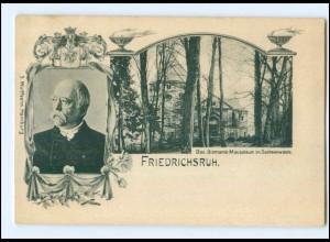 Y12767/ Friedrichsruh Bismarck Mausoleum AK 1900