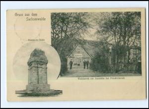 U7494-2055/ Waldesruh zur Aumühle bei Friedrichsruh Bismarck-Säule AK 1913