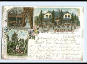 U7764/ Neumünster Gruß vom Forsthaus Litho AK 1898