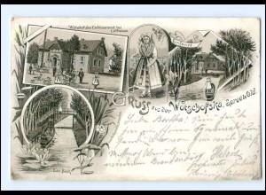 U7563-032/ Gruß aus deer Wotschofska Spreewald Lübbenau Litho Ak 1898