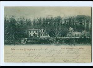 XX005366/ Hamburg Gruß aus Bergedorf Zum Waldhause , Mondschein AK 1899