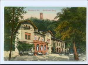 U7797-093/ Rochlitz Rochlitzer Berg AK ca.1910