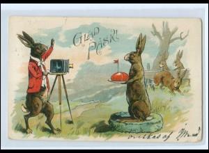 U9141/ Ostern Glad Pask Hase fotografiert Fotoapparat Litho AK 1905