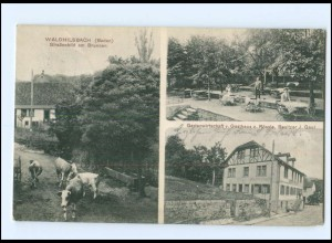 U7919-6903/ Waldhilsbach b. Neckargemünd Gasthaus z. Rössle AK 1910