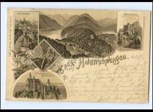 Y13389/ Gruß aus Hohenschwangau Schloß Neuschwanstein Litho AK 1897