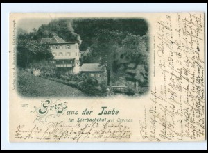 U7937-7603/ Gruß aus Taube im Liebachthal bei Oppenau AK 1899