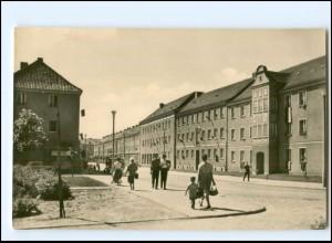 XX005581/ Neubrandenburg Straße der DSF AK 1962