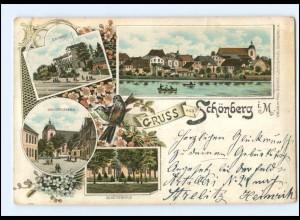 XX005602-239/ Gruß aus Schönberg i. M. Litho AK 1898