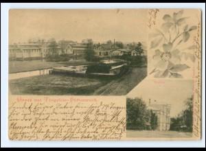XX005707/ Gruß aus Torgelow Hüttenwerk AK 1899
