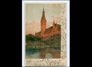 U8274/ Zeno-Diemer Litho AK Hamburg Rathaus 1900
