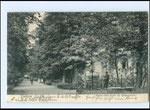 XX006075/ Berlin Pankow Hauptallee 1906 AK