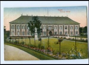 Y13884/ Schlesien Sagan Herzogl. Schloß 1908 AK