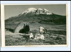 Y13534/ Ecuador Chimborazo Foto AK 1954