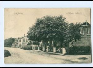 U8630-2371/ Borgstedt 1917 AK