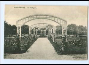 U8556/ Schlesien Schneidemühl Stadtpark 1916 AK