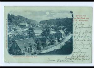 U8434-2054/ Tesperhude bei Lauenburg Mondschein AK 1899