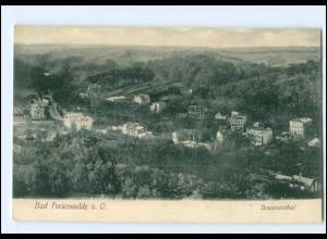 U8559-162./ Bad Freienwalde Brunnental 1911 AK
