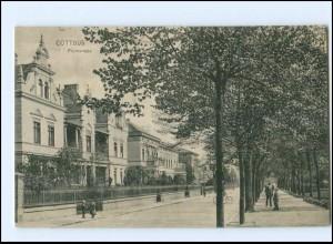 XX006310/ Cottbus Promenade AK 1924