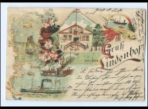 XX10182/ Hamburg Wilhelmsburg Neuhof Gruß aus dem Lindenhof Litho AK 1899