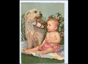 Y14401/ Baby mit Hund Terrier AK ca.1965