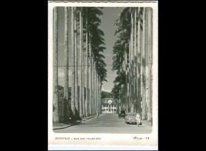 U8938/ Joinville Rua das Palmeiras Brasilien Foto AK ca.1965 Brazil