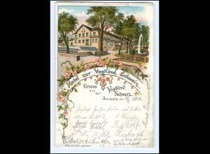 XX006897-085/ Jocketa Hotel zur Vogtländ. Schweiz Litho AK 1901