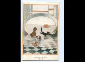 U9094/ Farbige schwarzes Kind , Katze Hund Humor AK ca.1912