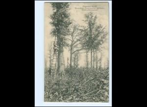 Y15097/ Argonnerwald ehem. französ. Artilleerie-Beobachtungsstand AK WK1 1918