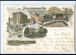 U9490/ Gruß aus Elmshorn Holsteinischer Hof Litho AK 1899