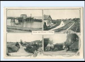 V914/ Blexen in Oldbg. bei Nordenham AK 1909