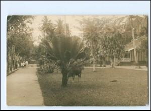Y15538/ Palembang Sumatra Indonesien Foto AK 1914