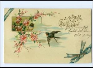 Y15429/ Glückwunsch Schwalben Litho Prägedruck 1907