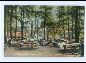 U9853-4777/ Welver Im Buchenwald AK 1912