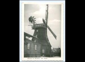 Y15737/ Wentorf bei Hamburg Windmühle AK ca.1955