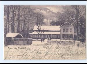 XX009685-182/ Gruß aus Schwaan Gesellschaftshaus Lindenbruch Wintermotiv AK 1901