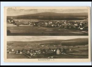 XX009569-6204/ Bleidenstadt Hahn 1919 AK