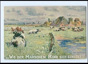 XX009702/ Nordmarkverein Nordschleswig AK 1911 Fritz Stoltenberg