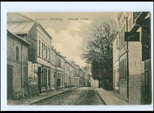 XX009417-171/ Gnoien Teterower Straße Ak 1918