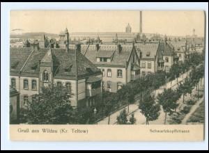 XX009413-159/ Wildau (Teltow) Schwartzkopffstraße AK 1908
