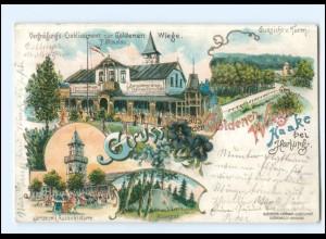 XX009900/ Gruß aus der Goldenen Wiege Haake bei Harburg Litho Ak 1898