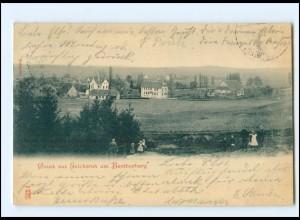 XX10123/ Erichsruh am Bentherberg 1902 AK