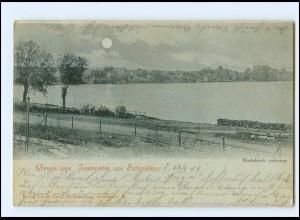 XX009887-192/ Gruß aus Zarrentin am Schaalsee Mondschein AK 1901
