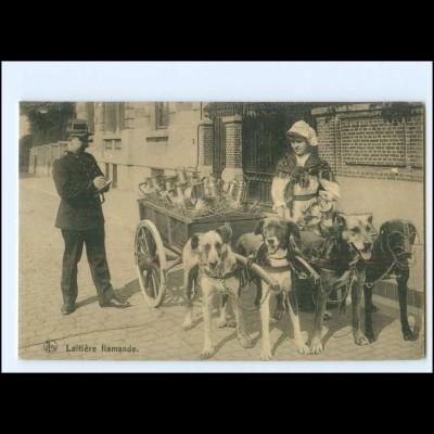 XX009934/ Laitiere flamande Hundekarre Belgien AK Polizei ca.1914