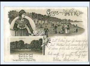 XX009953/ Gruß aus Wyk auf Föhr Litho AK 1901