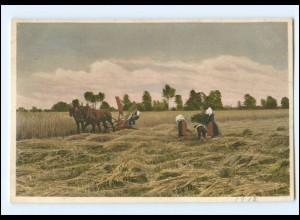 Y16635/ Ernte Heuernte Landwirtschaft AK 1912