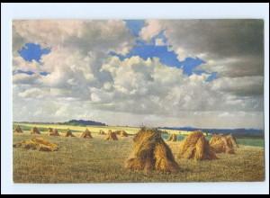 Y16636/ Ernte Heuernte Landwirtschaft Photochromie AK 1912